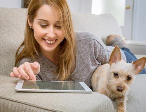 Videoportero Wifi ¿Qué tener en cuenta antes de comprarlo?